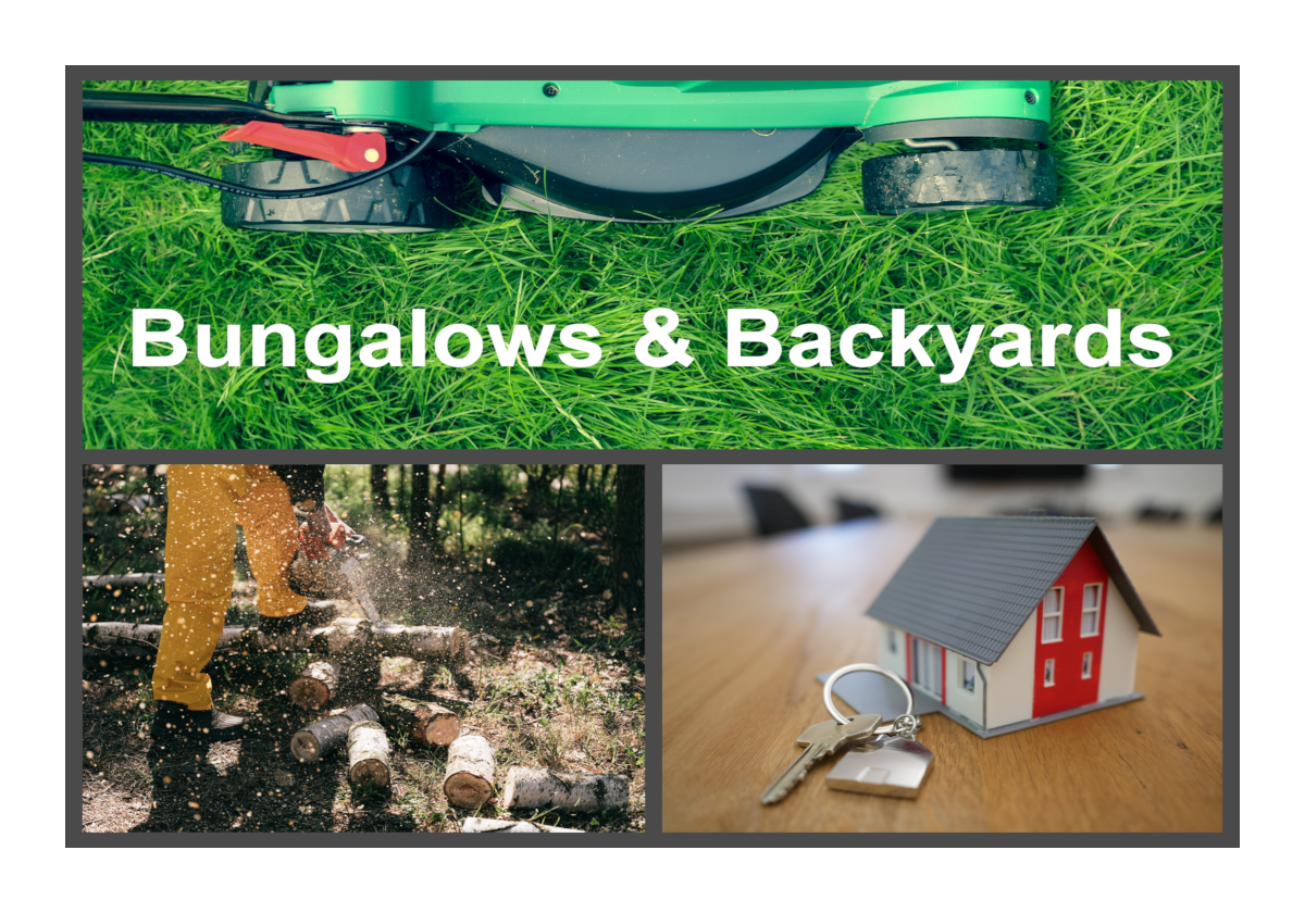 Bungalows &  Backyards  This collection features Lakeland businesses who specialize in lawns, remodeling, selling, and more!