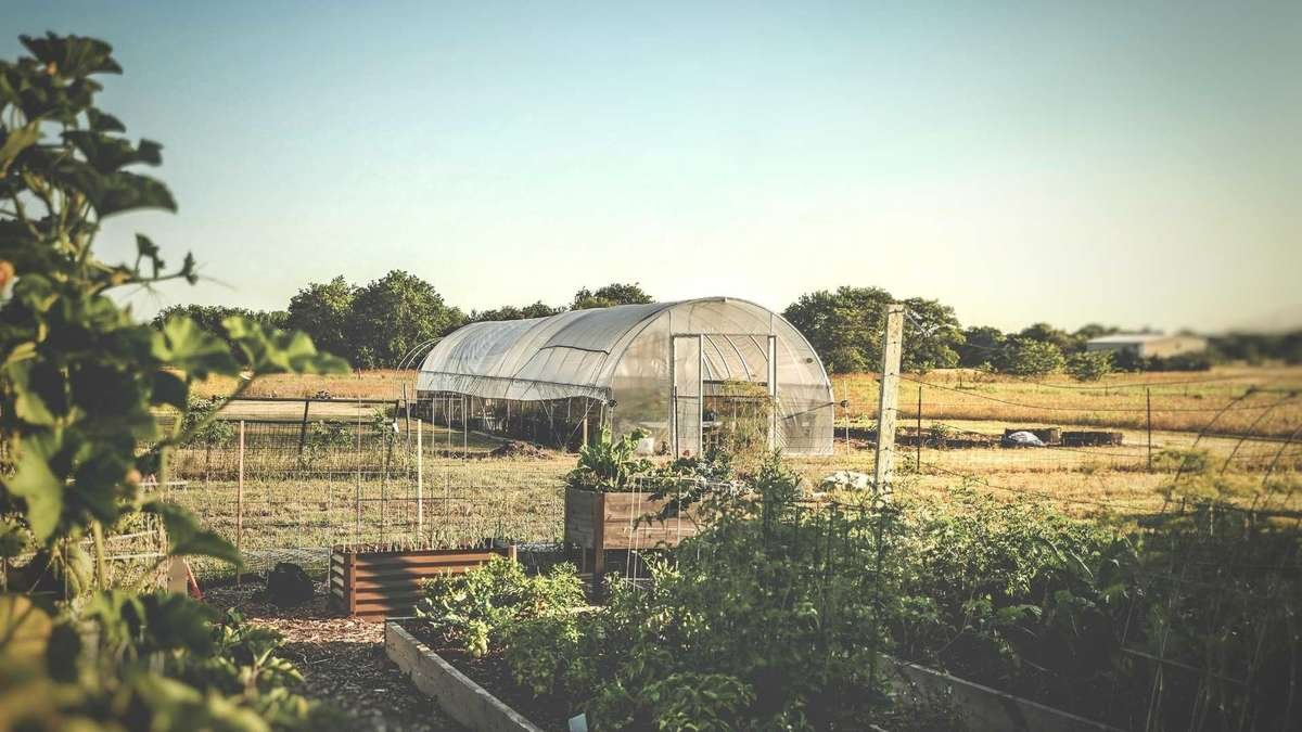 Hoop House Building