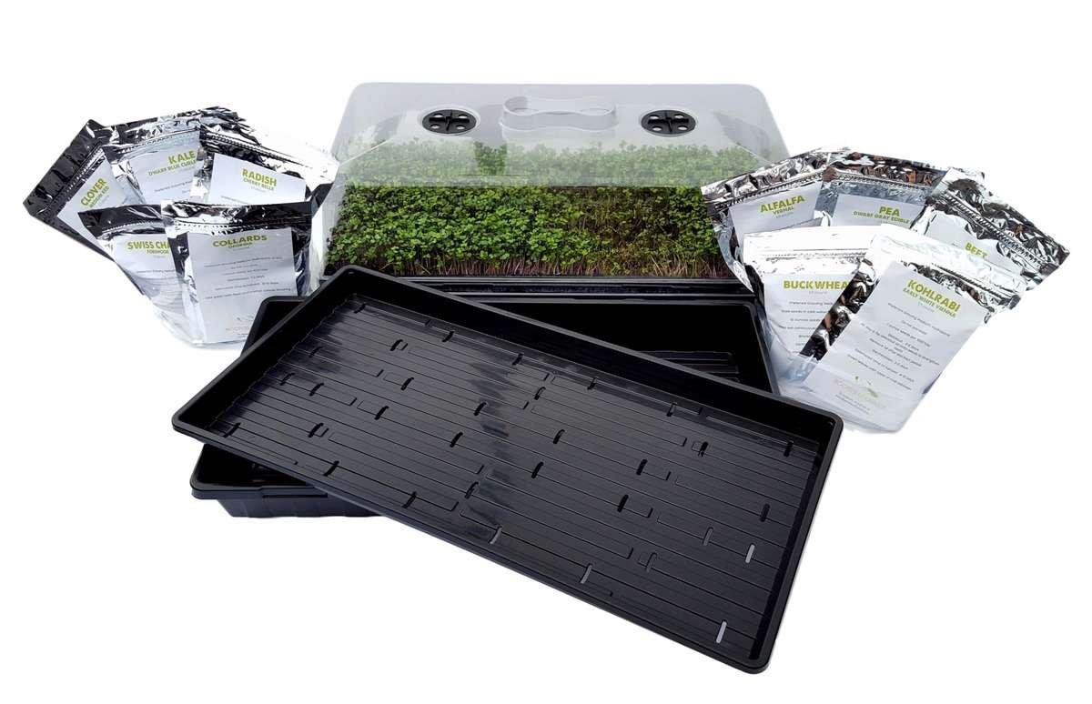 Microgreen Tray Kit