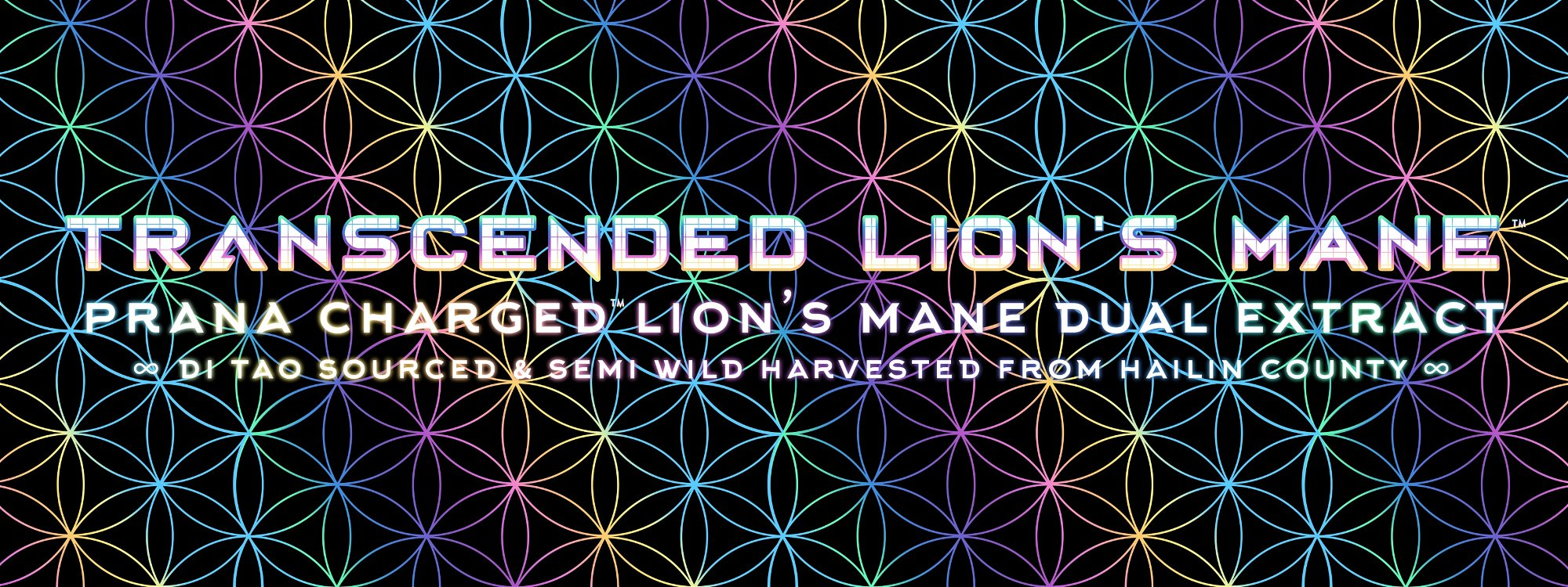 transcended lions mane di tao sourced dual extract powder