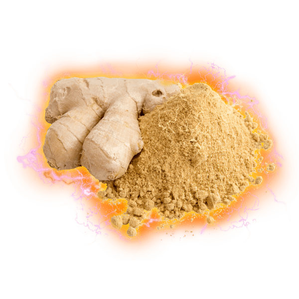 ginger root powder electric hologram