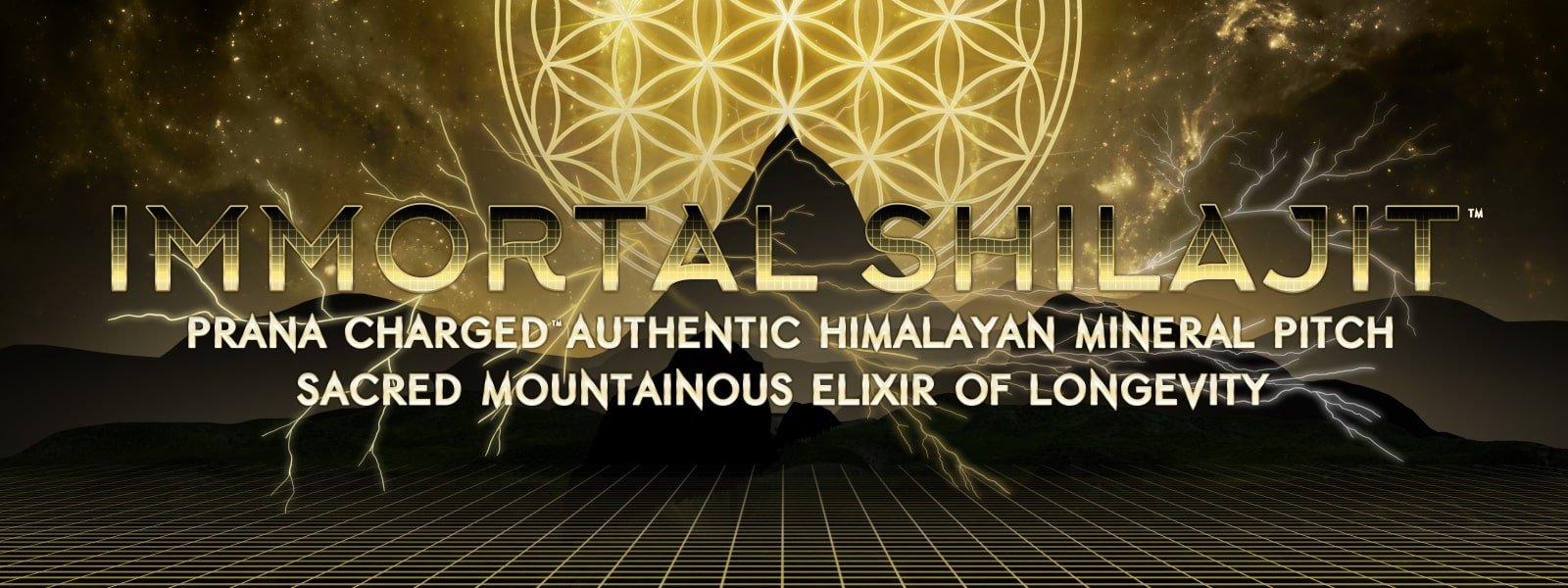 immortal shilajit flower of life authentic himalayan shilajit resin