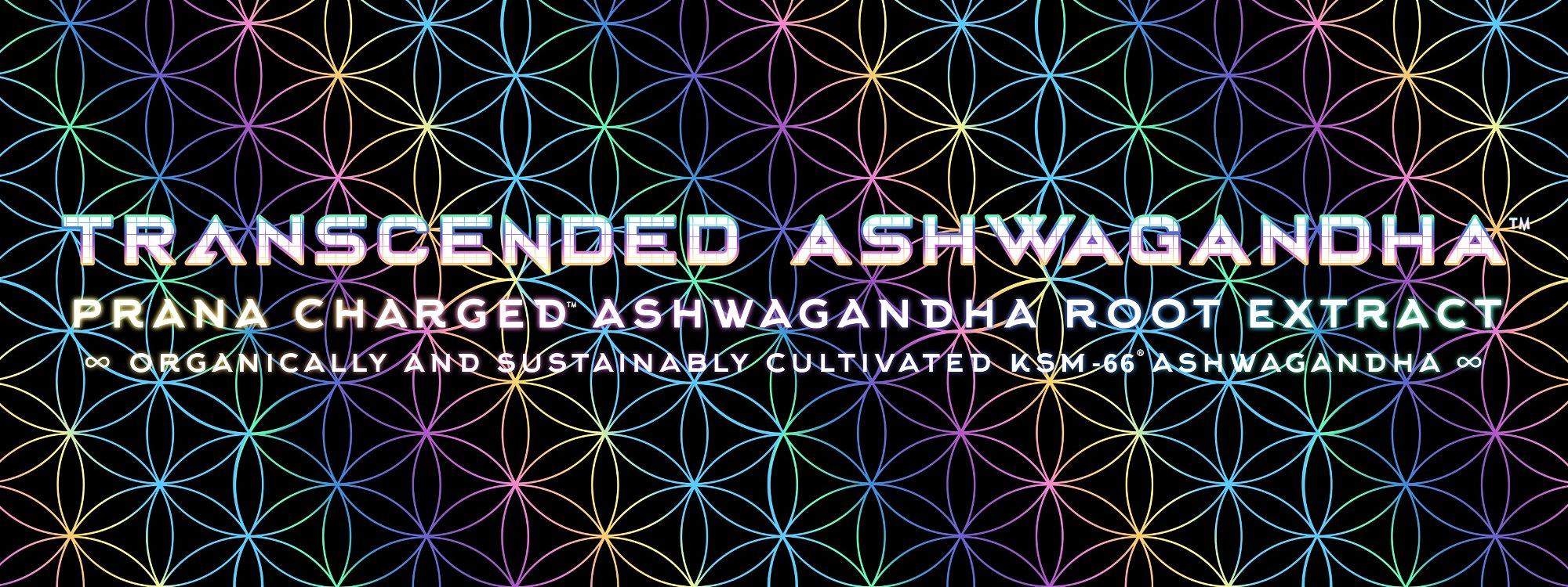 transcended ashwagandha