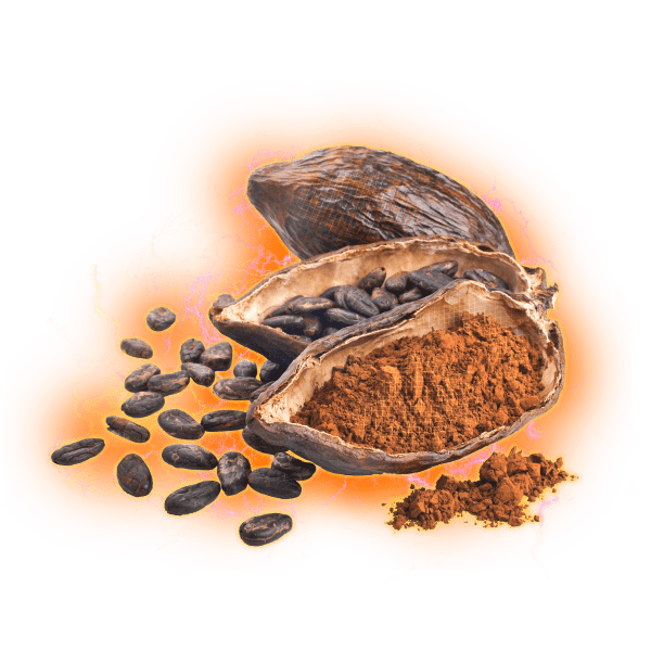 cacao bean powder electric hologram