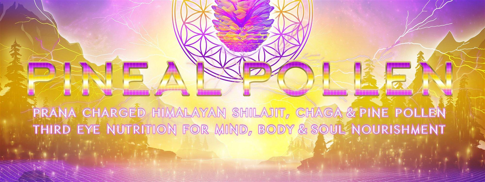 pineal pollen prana charged himalayan shilajit, chaga & pine pollen