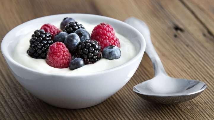Coconut Yogurt Kefir. Vegan Yogurt.