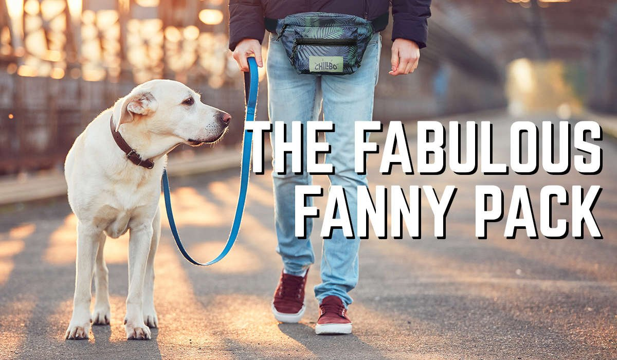 Chillbo fanny pack