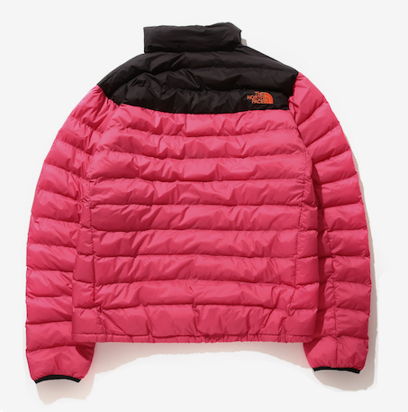 rear of The North Face x Beams nuptse jacket in red