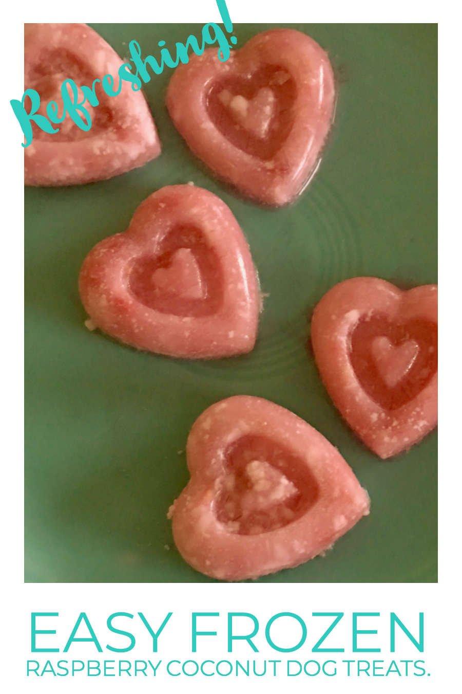 frozen raspberry coconut dog treats