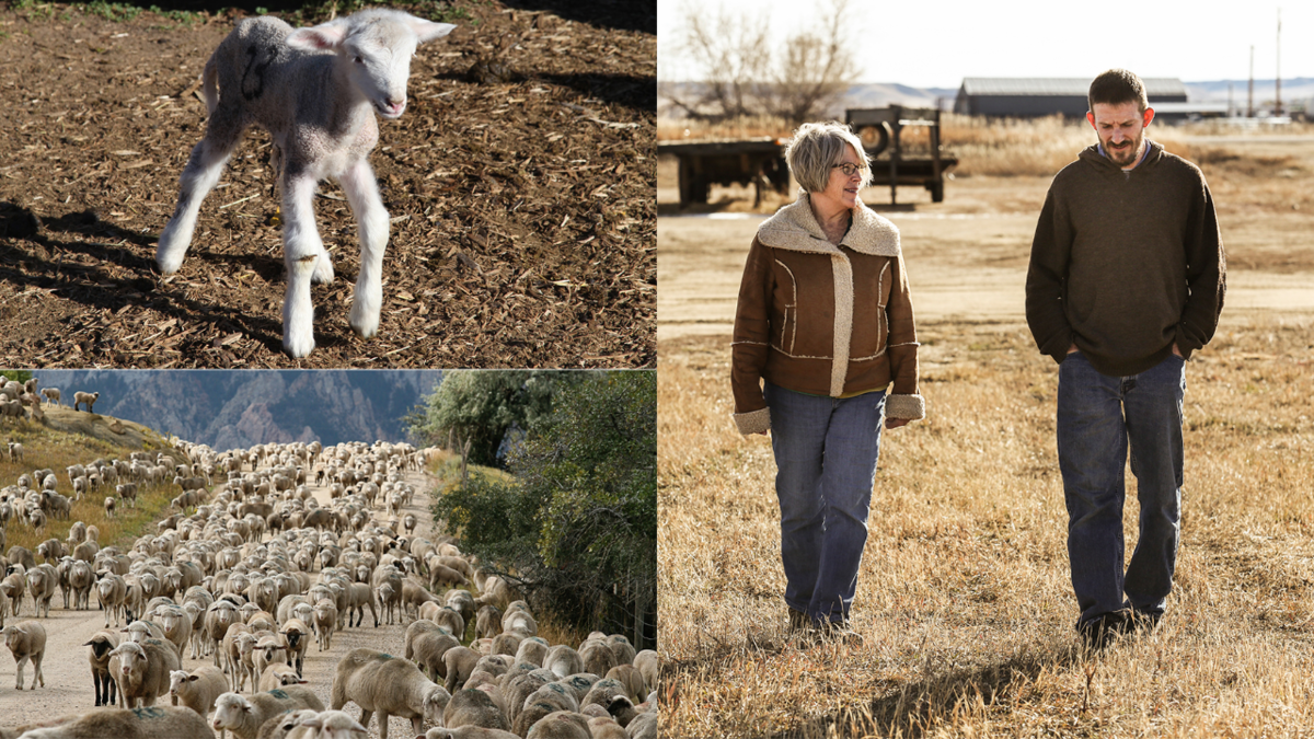 Episode 105: Running A Small Family Wool Business With Ben Hostetler of Mountain Meadow Wool Mill