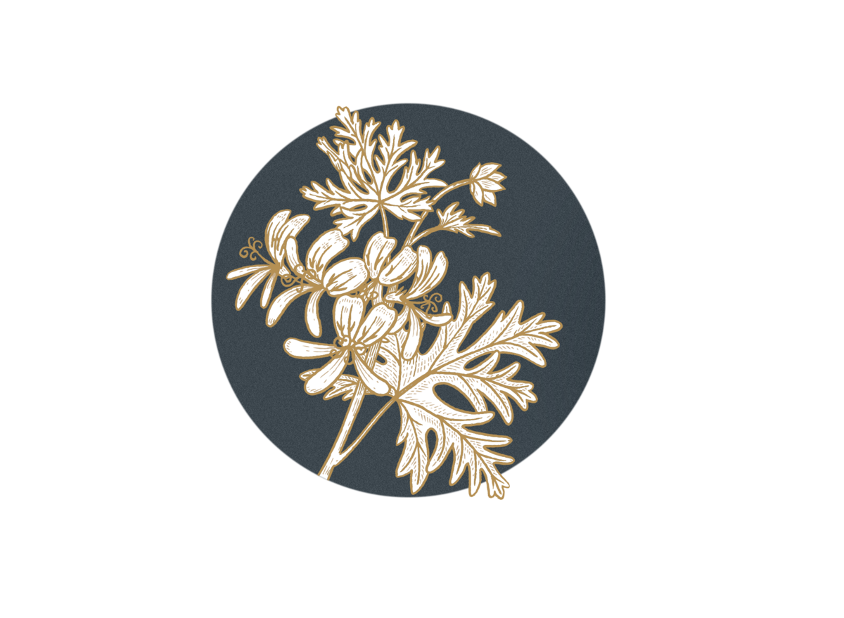 Rose Geranium (pelargonium graveolens) AVOILA Nourishing Face Oil