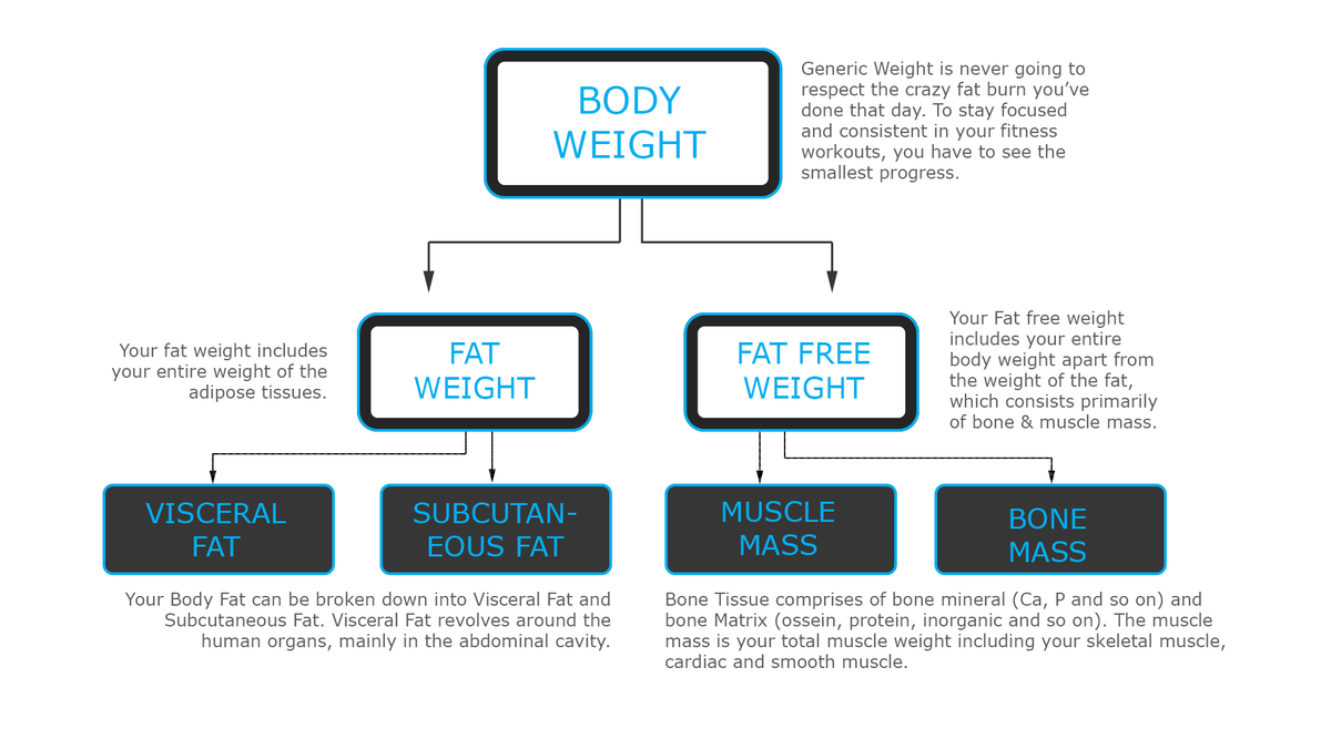 Actofit Health Chart