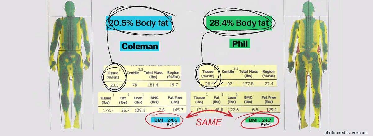 Actofit Body fat % vs BMI