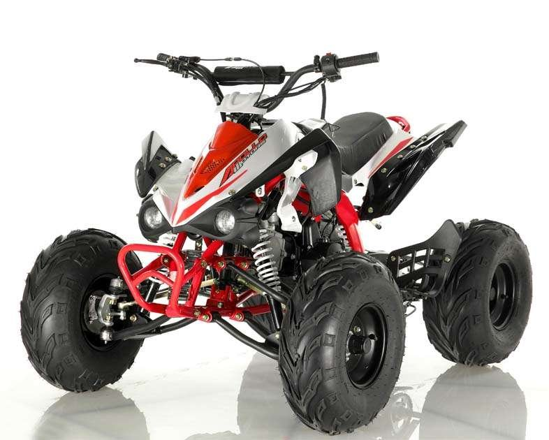 TAOTAO 110D KIDS ATV