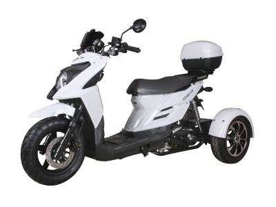 Ice Bear Shark 50cc Trike White