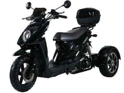 Ice Bear Shark 50cc Trike Black