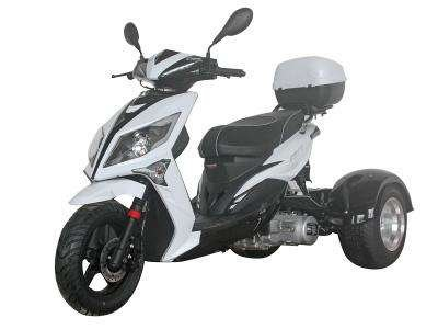 Ice Bear Mojo 150cc Trike Black/White