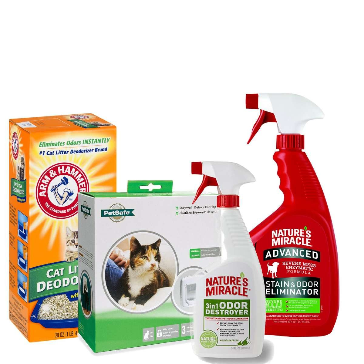 Shop Cat Training & Cleaning