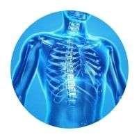 Biomag 3D-e Healing