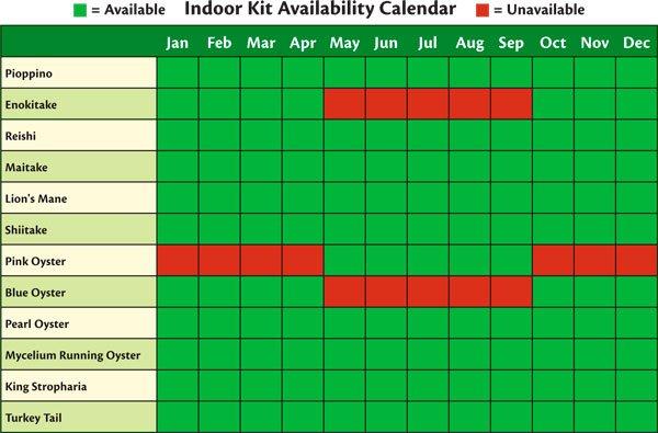 Indoor Kit Availability Calendar