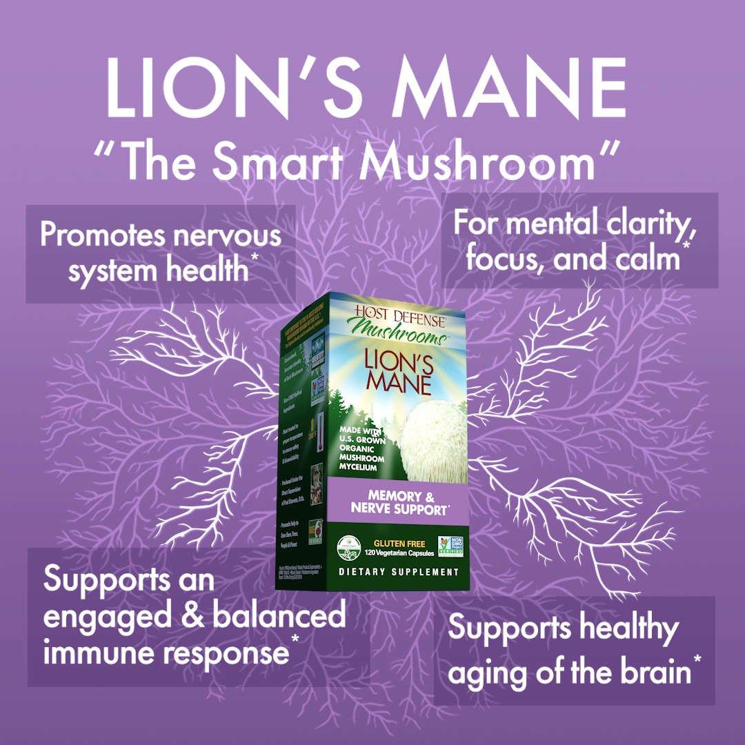 "Lion's Mane - The ""Smart Mushroom"""