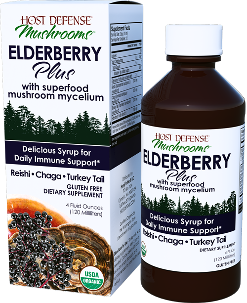Buy Elderberry Plus Syrup for daily immune support 4 oz