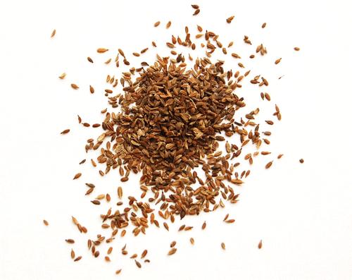aromatherapist seme sargarepa sastojak za hranljivu kremu za lice