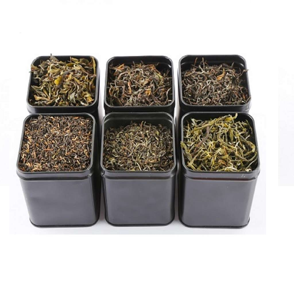 Direct from Source Teas in Airtight Square Tea Storage Tins