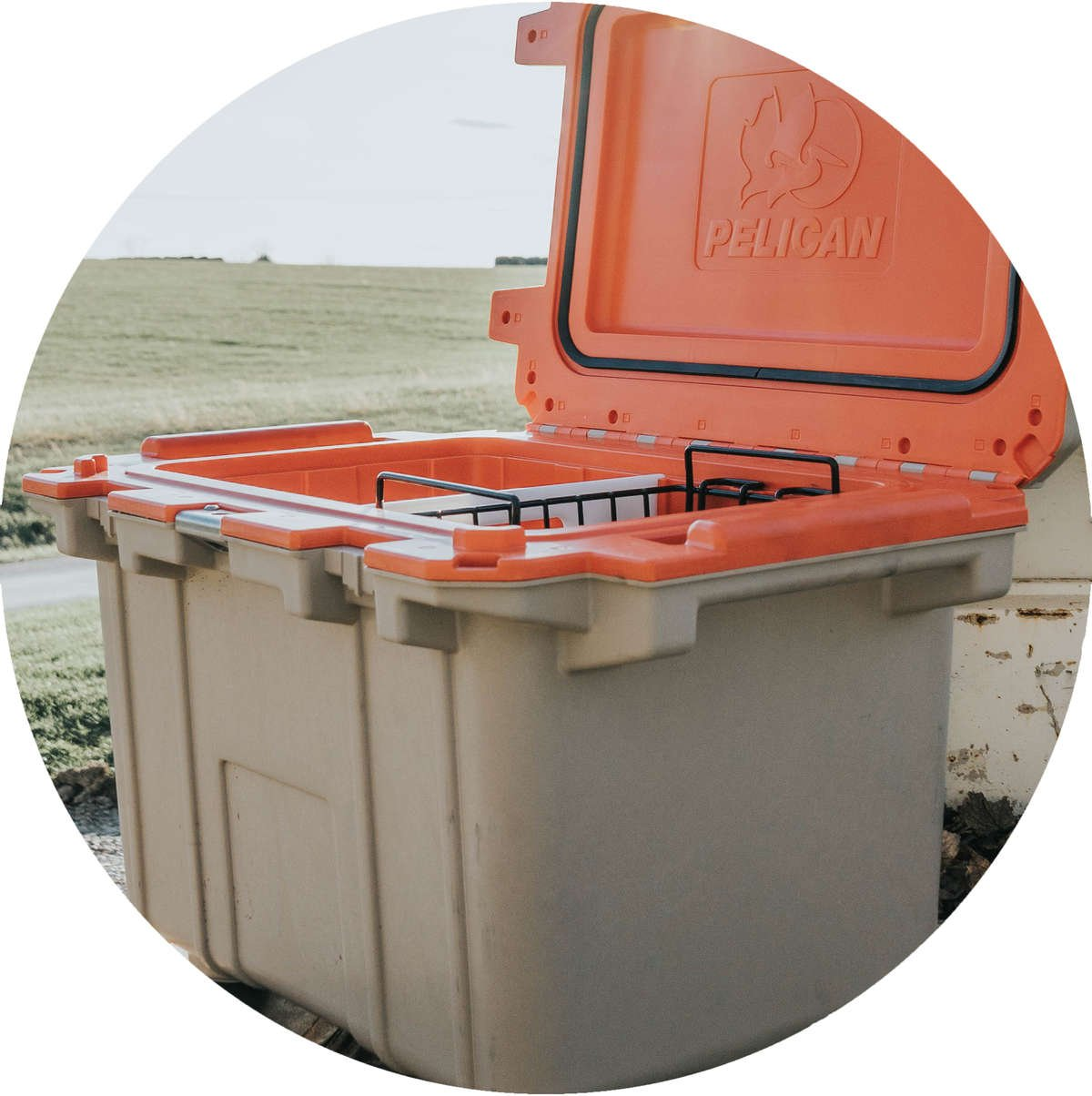 A 50QT Elite Cooler is open. Inside there is a 50/70 Quart Small Dry Rack Basket next to a cooler divider.