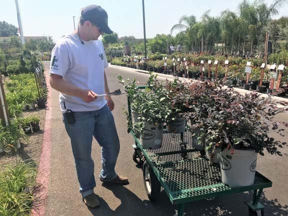 Outdoor Plant Nursery