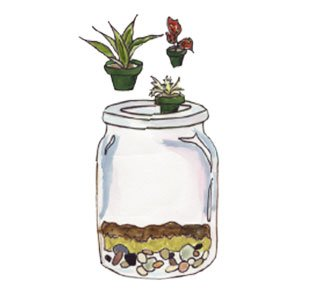 adding plants to a terrarium jar