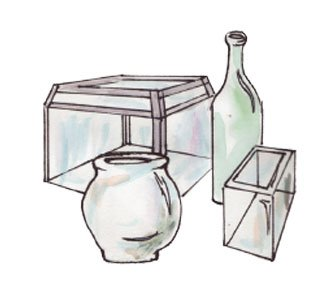 different jars of terrariums
