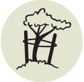 icon showing a tree tied with stakes