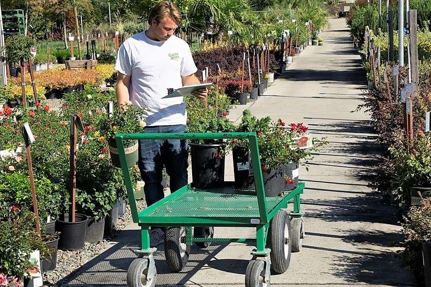 Landscape professional choosing plants