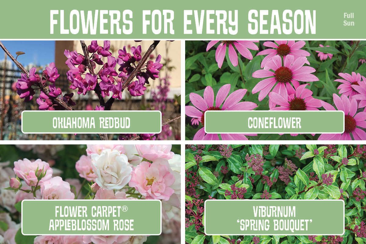 Flowers For Every Season graphic
