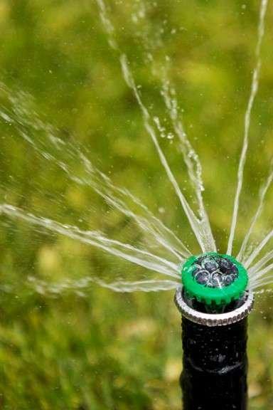 MP Rotator Watering Lawn