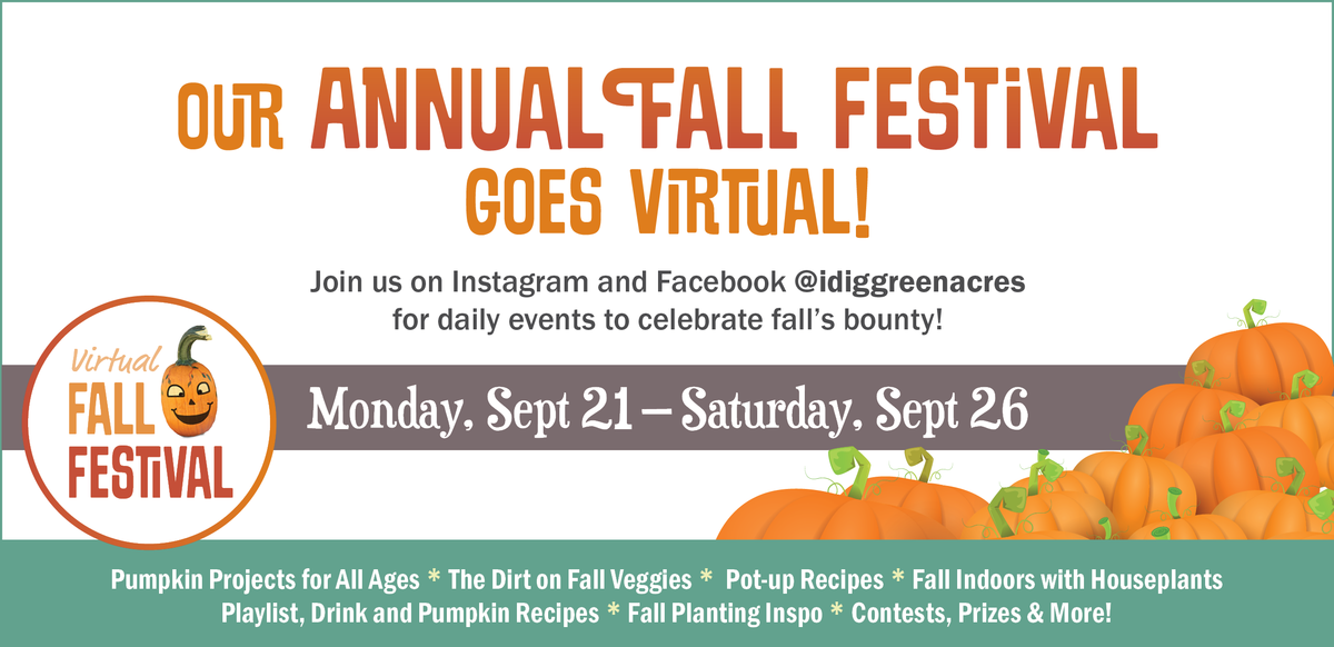 Our Annual Fall Festival Goes Virtual!