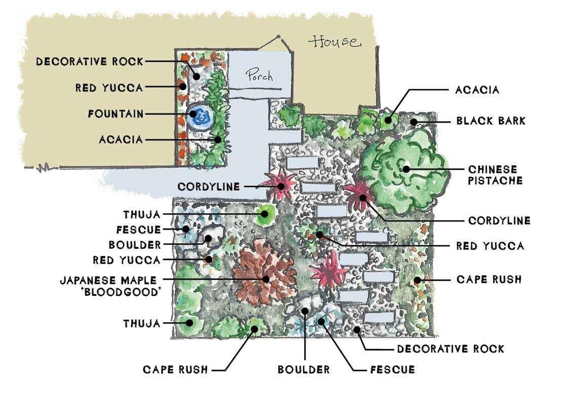 Contemporary landscape plant diagram