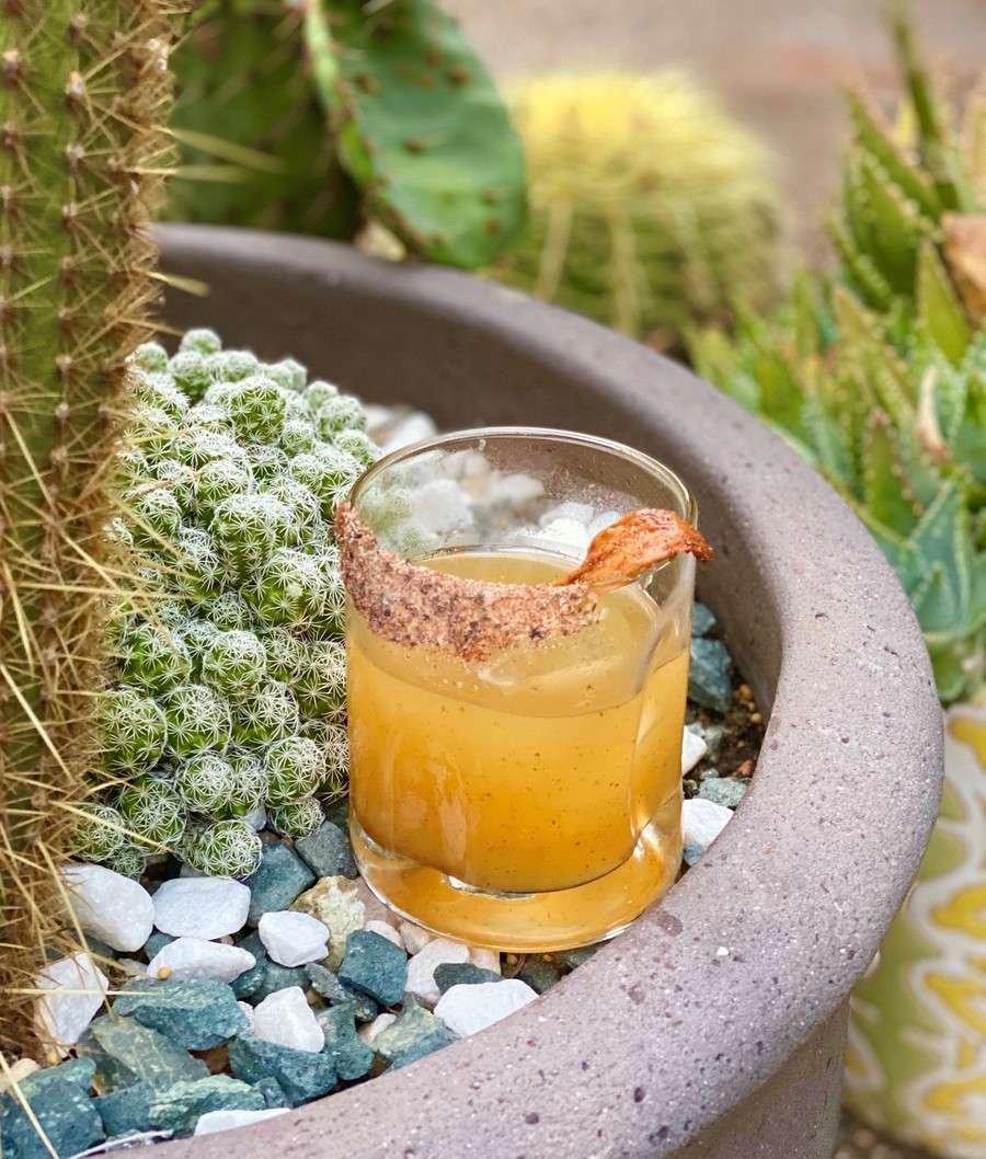 Smoky Agave Cocktail
