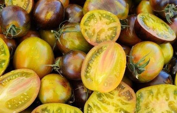 Wild Boar Tomato: Atomic Fusion