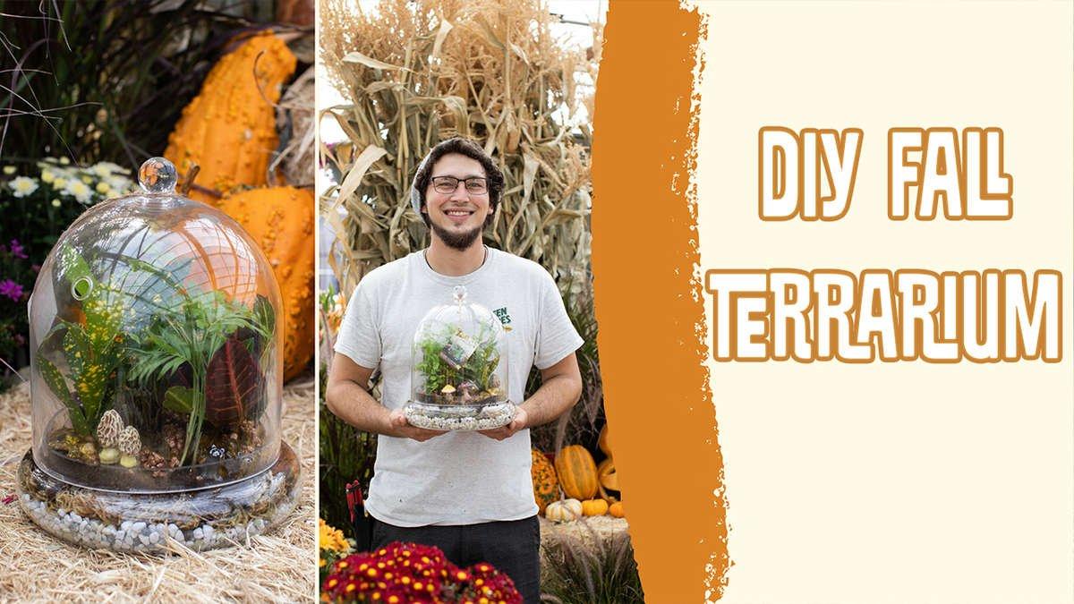 DIY Fall Terrarium