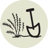 icon showing a shovel digging