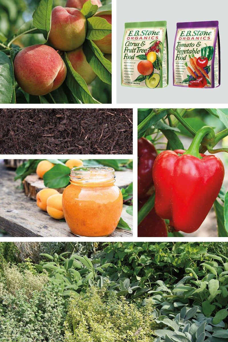 Peaches, E.B. Stone Organics Citrus & Fruit Tree Food, E.B. Stone Organics Tomato & Vegetable Food, mulch, red pepper, apricot jam, fresh herbs