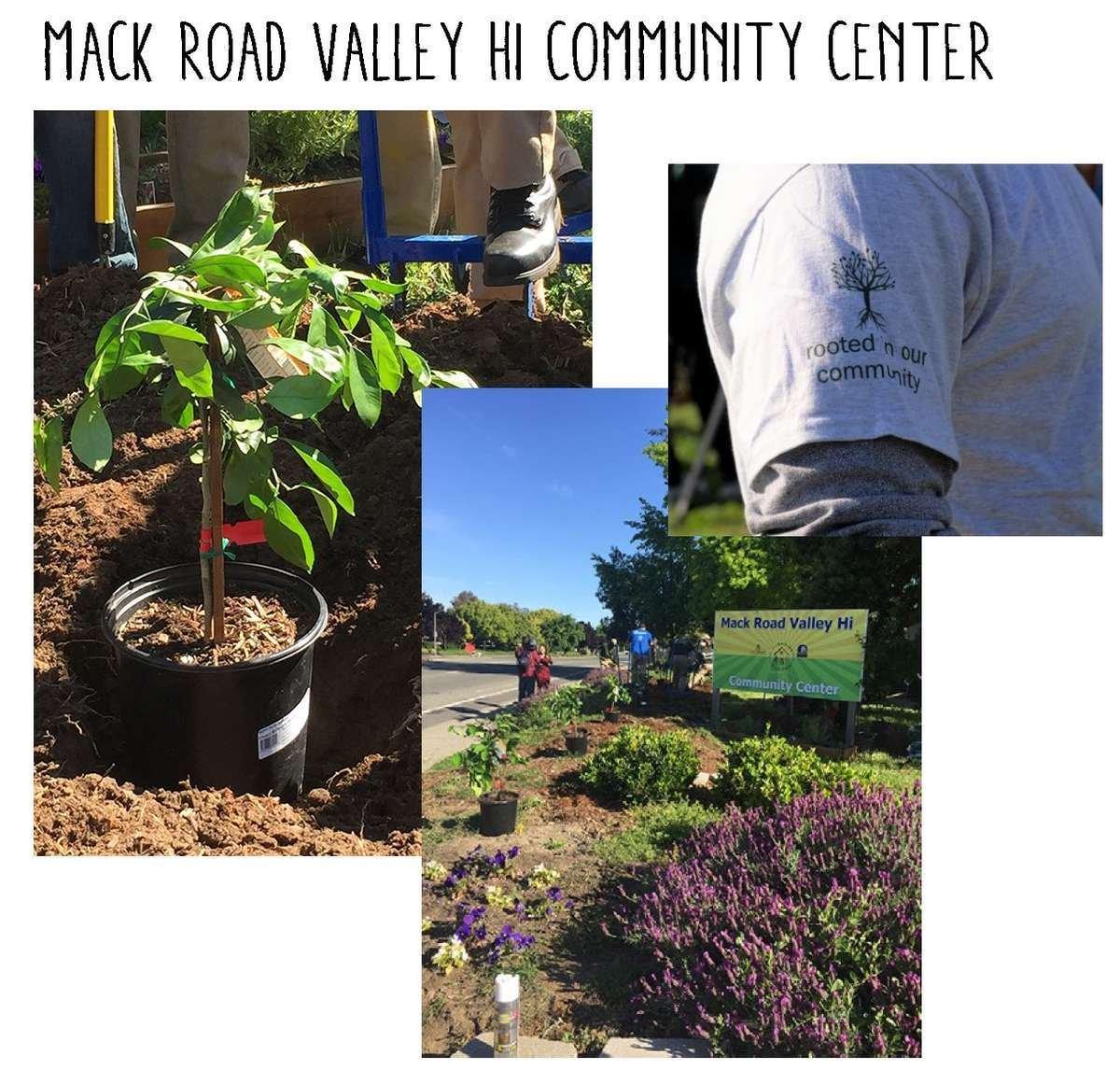 Planting landscape at Mack Road Valley Hi Community Center