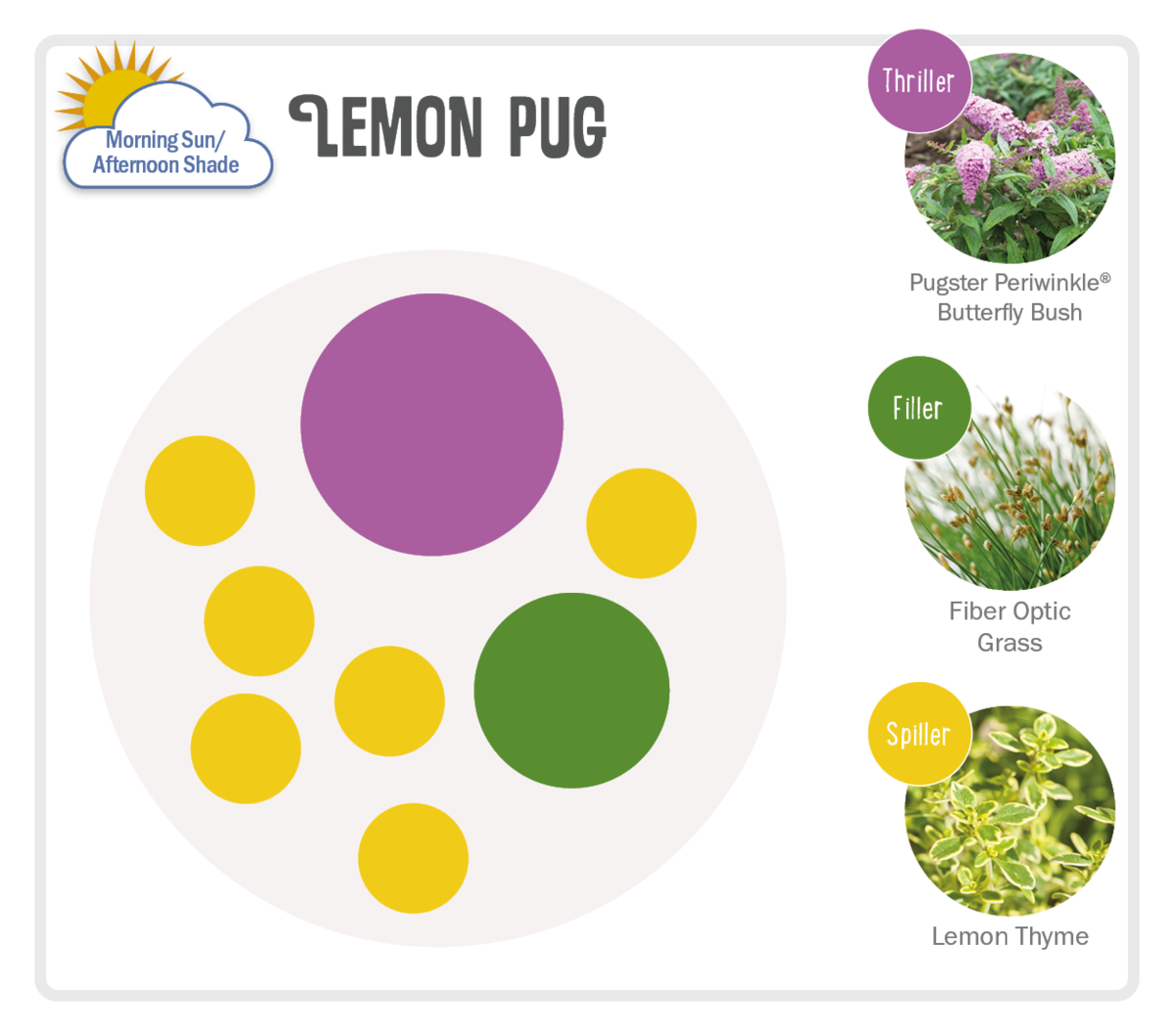 Image of Lemon Pug Pot-Up Recipe