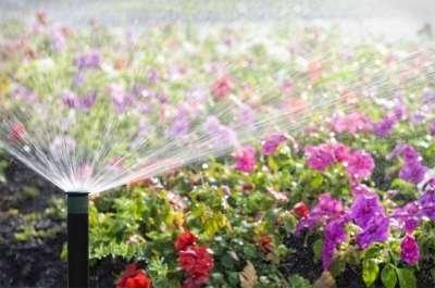 Traditional Sprinkler Head Watering Flowers