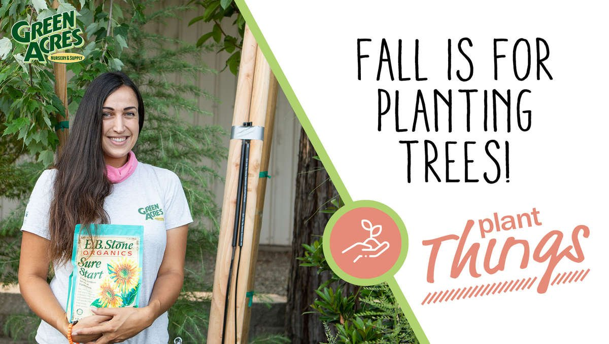 Link to Fall is for Planting Video Image