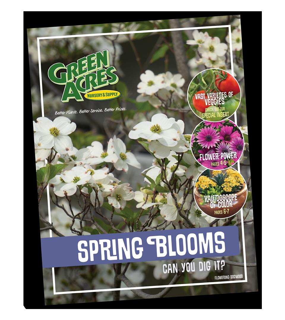 Catalog Garden Inspiration