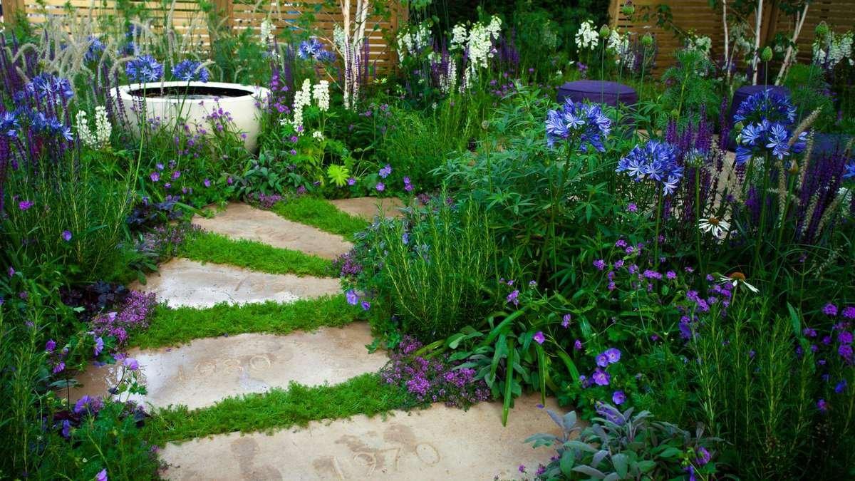 A garden of Flowering Perennials in Shades of Purple