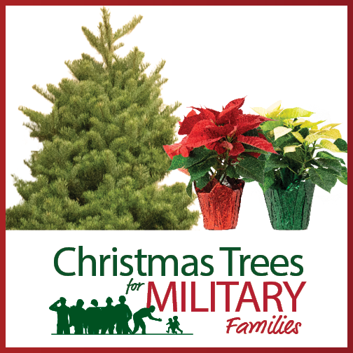 one 6 foot Noble Fir and two 4 inch poinsettias